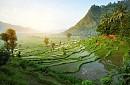 Chương Trình 5 Ngày 4 Đêm khởi hành hàng ngày từ Hà Nội / Sài Gòn