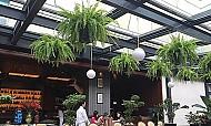 Cafe Việt ở Indonesia bất ngờ nổi tiếng sau án mạng