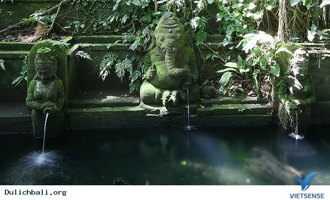 Đảo Bali thiên đường du lịch nhiệt đới - Ảnh 1